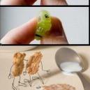 Cool Food Art