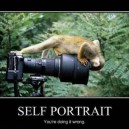 Portrait, you are doing it wrong