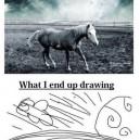 Expectaion vs. Reality