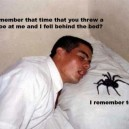 Spiders Revenge