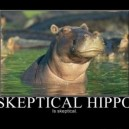 Skeptical Hippo is Skeptical