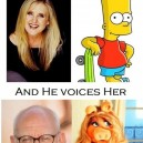 Who Voices Who