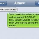 Wasn't That Drunk?