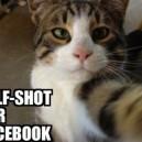 Self-shot for Facebook