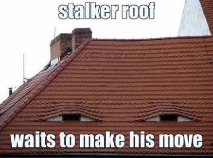 Stalker Roof
