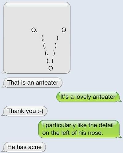 A Lovely Anteater
