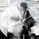 Umbrella Lvl Asian
