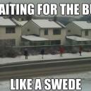 Like A Swede