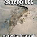 Crocodiles Can Now Fly or Teleport