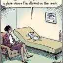 Dog With Shrink