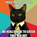 Executive Kitty