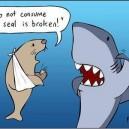 Seal Is Broken