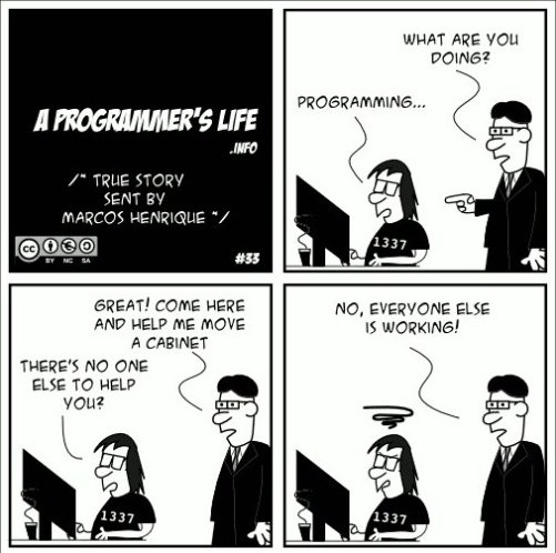 A Programmer's Life