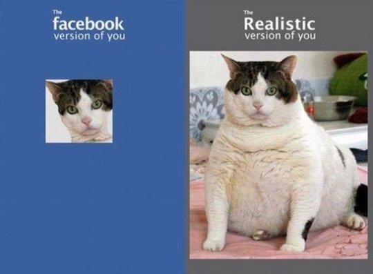 Facebook vs. Reality