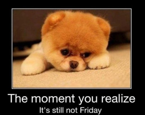 Still Not Friday…