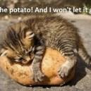 I Love The Potato!