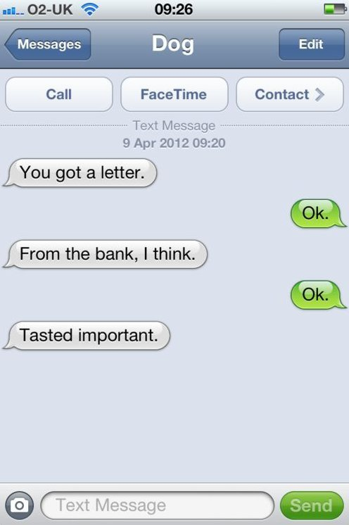 SMS From Dog