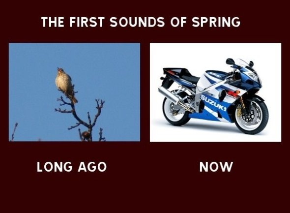 The First Sound of Spring