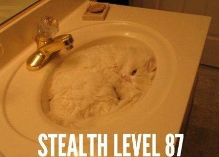 Stealth lvl. 87