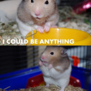 They Said I Could Be Anything…