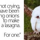 I'm Not Crying – Owl