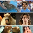 Nadal, Is That You?