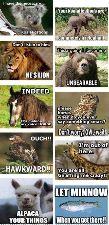 Animal Puns =)