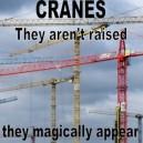 Magic Crains