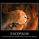 Lion Facepalm