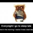 Happens Every Night…