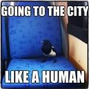 Like a Human
