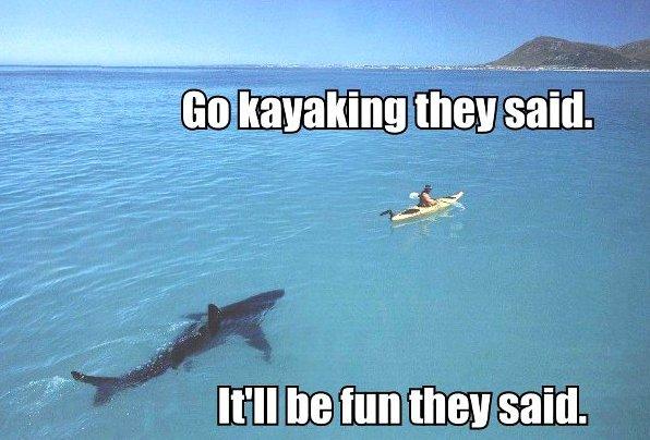Go Kayaking They Said…