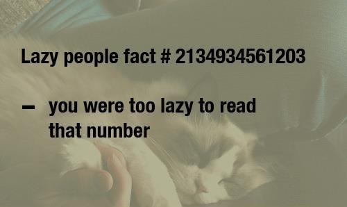 Lazy People Fact