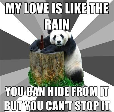 Pick Up Line Panda!