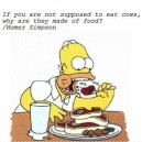 Epic Homer Simpson Quote