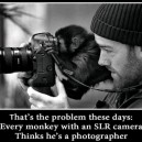 Photographer These Days…