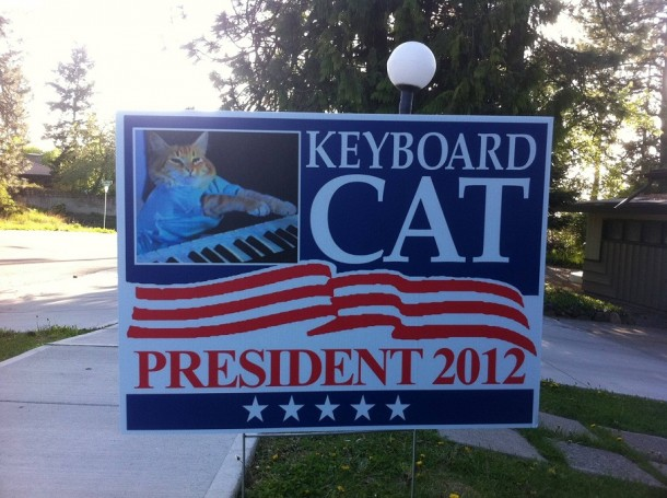 Keyboard Cat For President 2012!