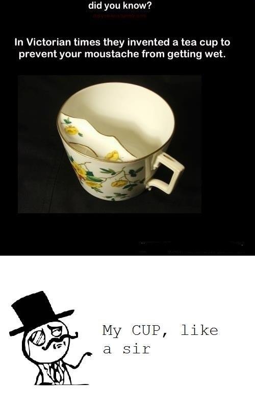 Tea Cup Like a Sir