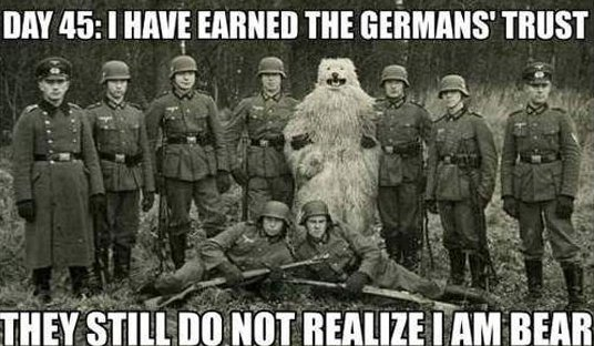 Silly Germans