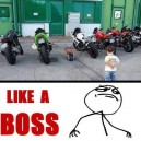 Like a Little Boss