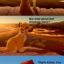 Simba Learns About The Internet