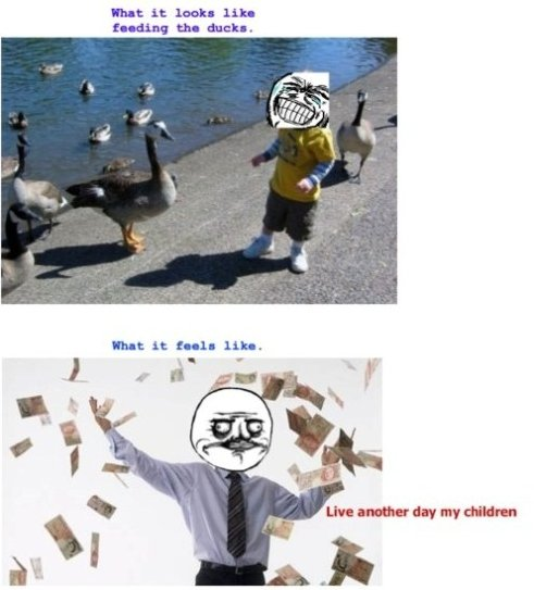 When I Feeds The Ducks