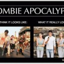 Zombie Apocalypse – What it Really Looks Like