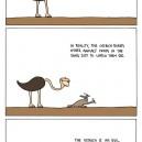 Evil Ostrich