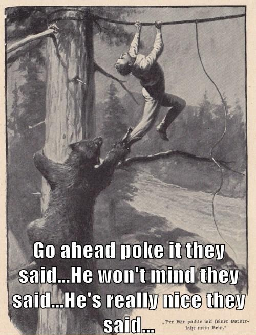 Poke It They Said…