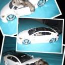 Hamster Got a Ride