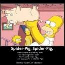 Spider Pig!