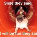 Slide They Said…