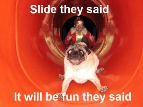 Slide They Said…
