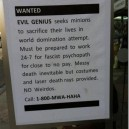 Wanted: Evil Genius